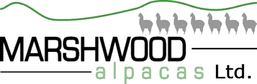 Marshwood Alpacas Ltd